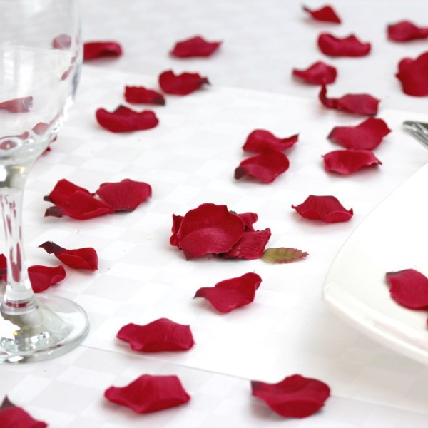 scattered red silk petals