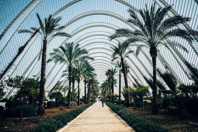 Valencia honeymoon