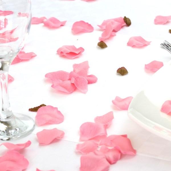 Scatter pink silk petals