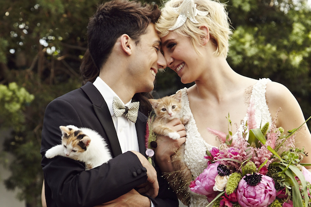 The purrfect day cool cat themed wedding inspiration junglespirit Images