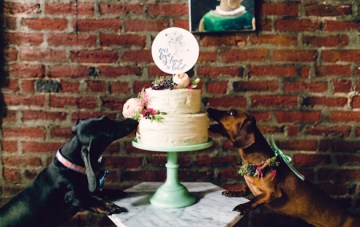 Adorable Overload: It's a Puppy Wedding!