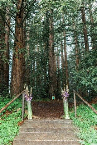 Colourful Redwoods Wedding in the Rain | Caitlin Turner Photography | Bridal Musings Wedding Blog 7
