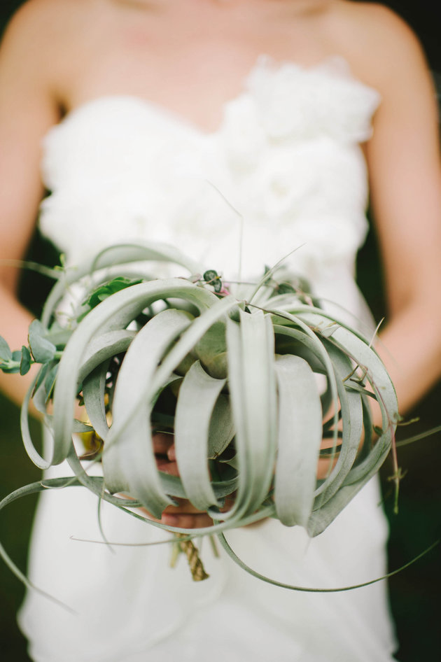 Trend Alert: 21 Air Plant Ideas for Your Wedding
