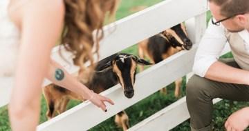 Fun Farm Wedding by Two Birds Photography 39