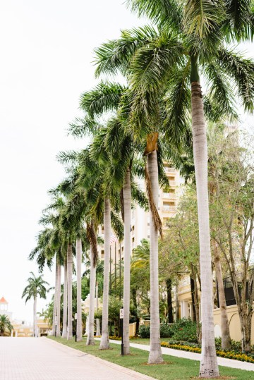 Ritz Carlton Sarasota Wedding | Cathy Durig Photography | Bridal Musings 15