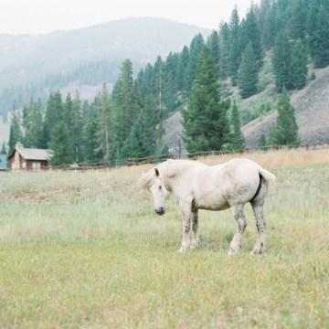 Rustic Montana Ranch Wedding | Emily Blumberg Photography 5