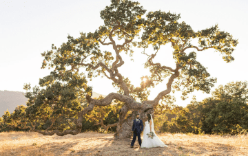 A Summery Multicultural Western & Indian Carmel Valley Wedding