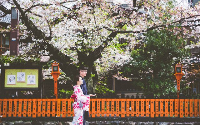 mila-story-engagement-overseas-japan-cherry-blossom-deer-outdoor-013