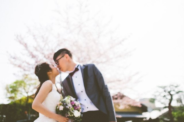 mila-story-engagement-overseas-japan-cherry-blossom-deer-outdoor-055