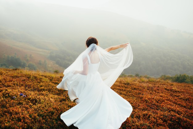 wedding dress, garment bag
