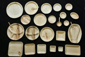 Biodegradable Leaf plates: Sustainable alternative of Styrofoam/Chemicals made plates