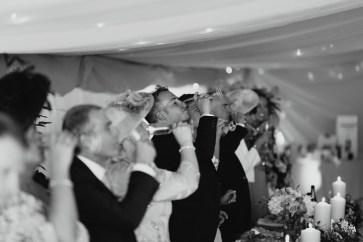 An Elegant Wedding at Home (c) Aaron Cheeseman (71)