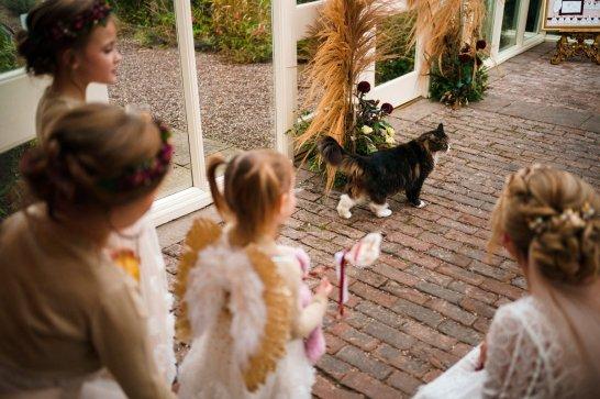 A Woodland Wedding at Abbeywood Estate (c) Neil Redfern (50)