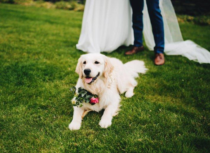 A Summer Lake District Wedding at The Lingholme Estate (c) Rachel Joyce Photography (61)