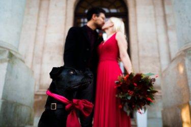 A Romantic December Wedding at Ashton Memorial (c) Madison Picture (65)