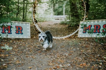 Circus Wedding Styled Shoot (c) Key Reflections (38)