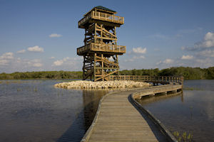 Observation Tower Construction - Robinson Preserve