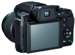 electronic viewfinder and lcd screen