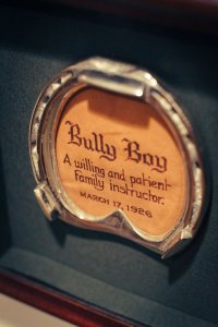Bully Boy Distillers Horse
