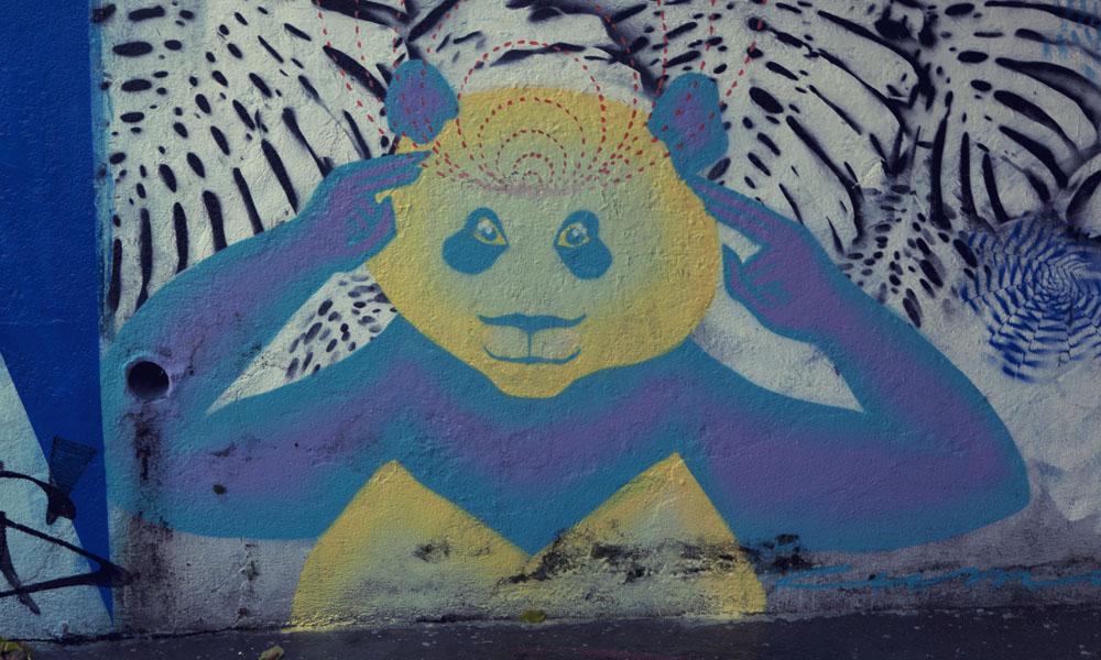 psychic panda graffiti Sao Paulo