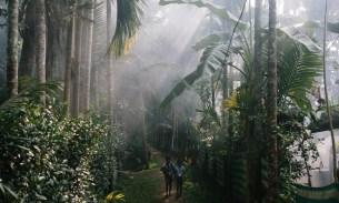 Kerala backwaters: a photo essay