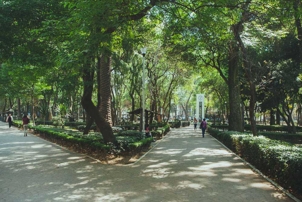 Things to do in Condesa - Parque mexico