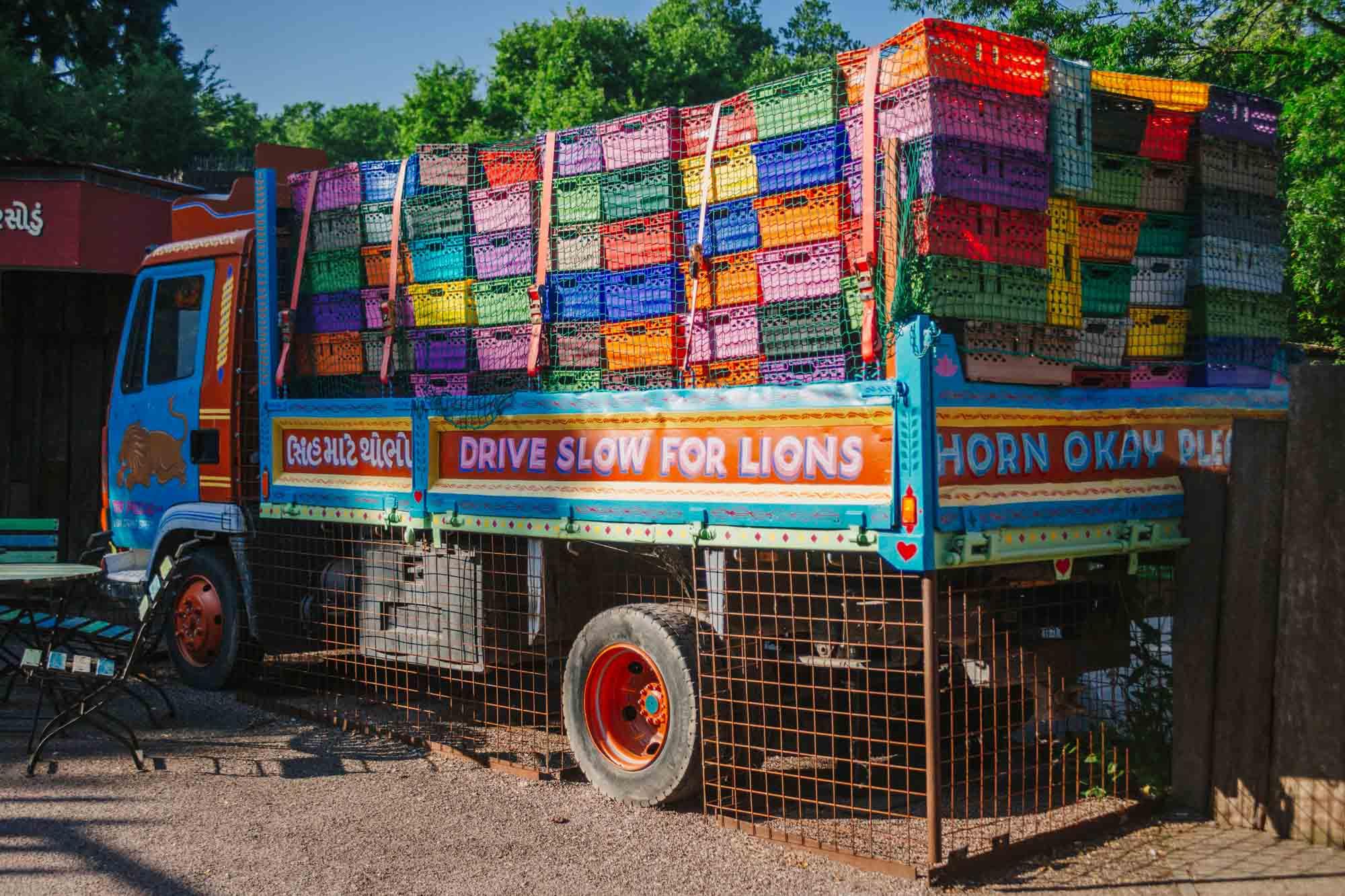 Gir Lion Lodge - London Zoo