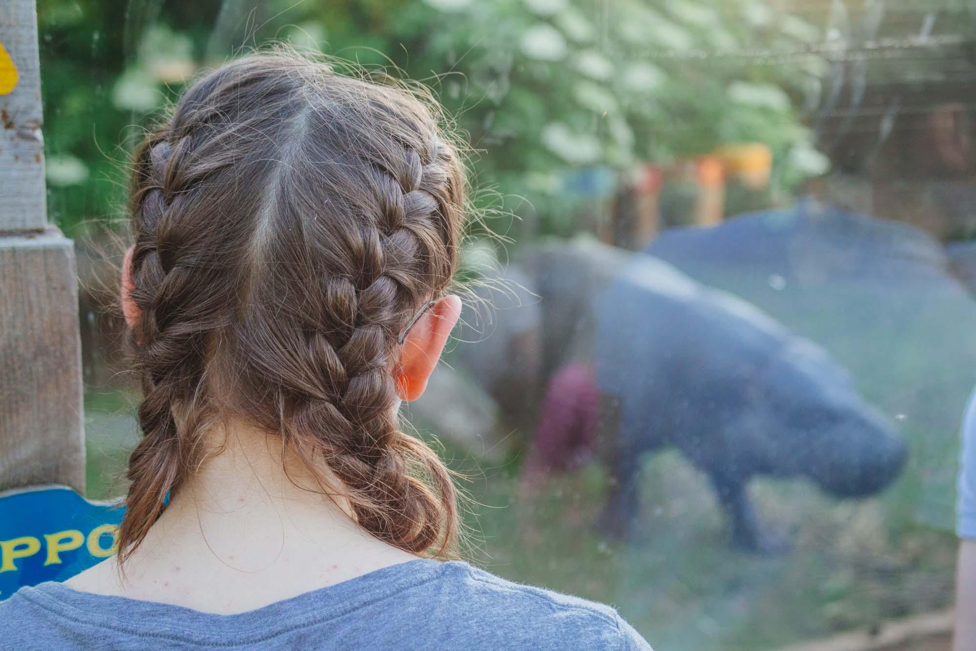 London Zoo - Pygmy hippos