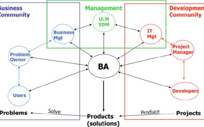 Business analyst vs. project manager – You Choose!
