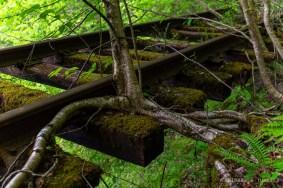 Glen Rogers Branch