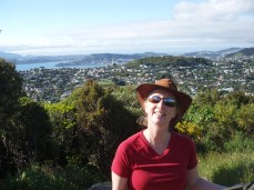Top of Mt Kau Kau with a view of Wellington in the background