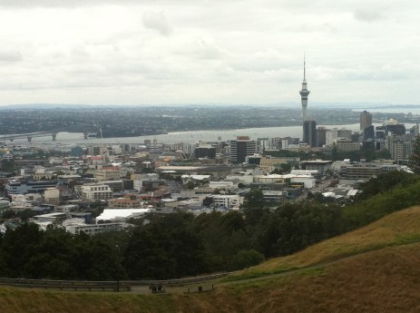 View from top of Mt Eden