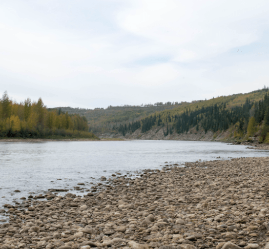 lake, shore, and treeline