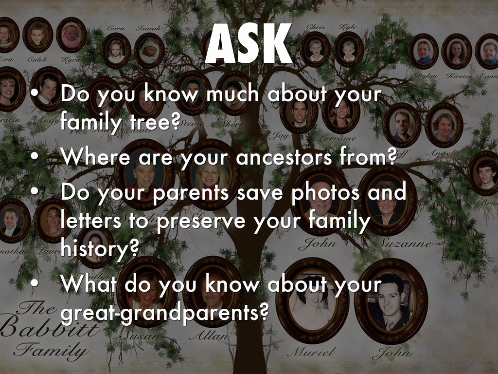 Antigone S Family Tree Worksheet Answers