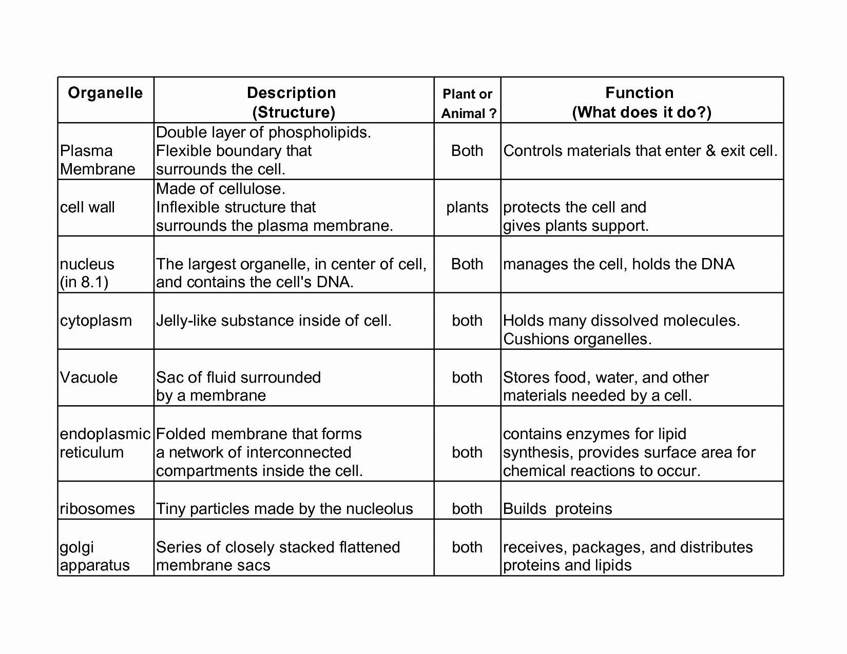 Cell Organelles Worksheet Answer Key