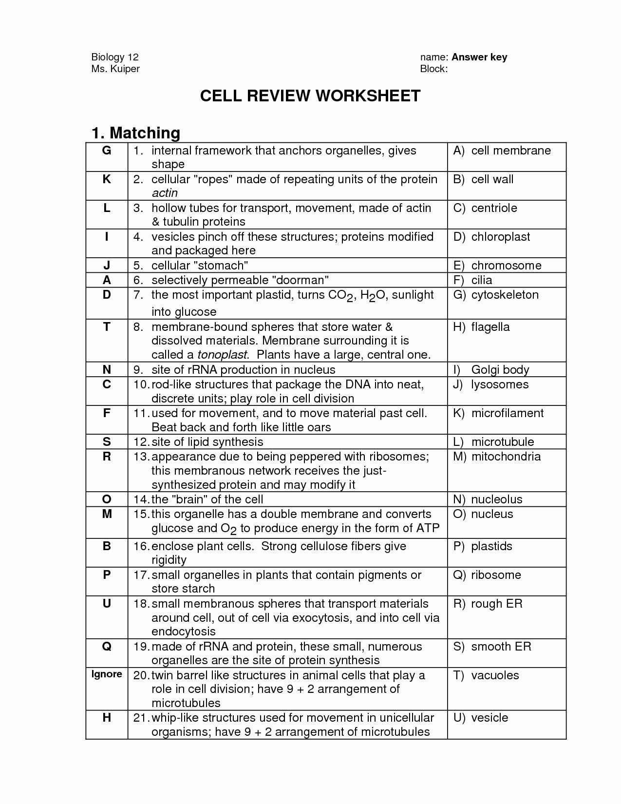 Cell Organelles Worksheet Answer Key Biology