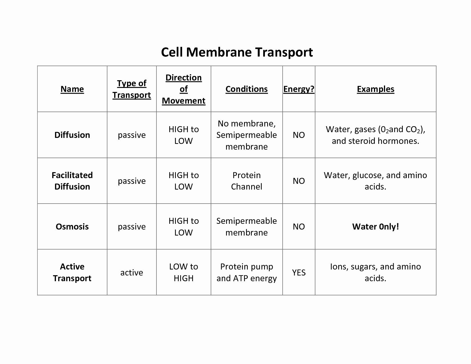 Facilitated Diffusion And Active Transport Answer Key