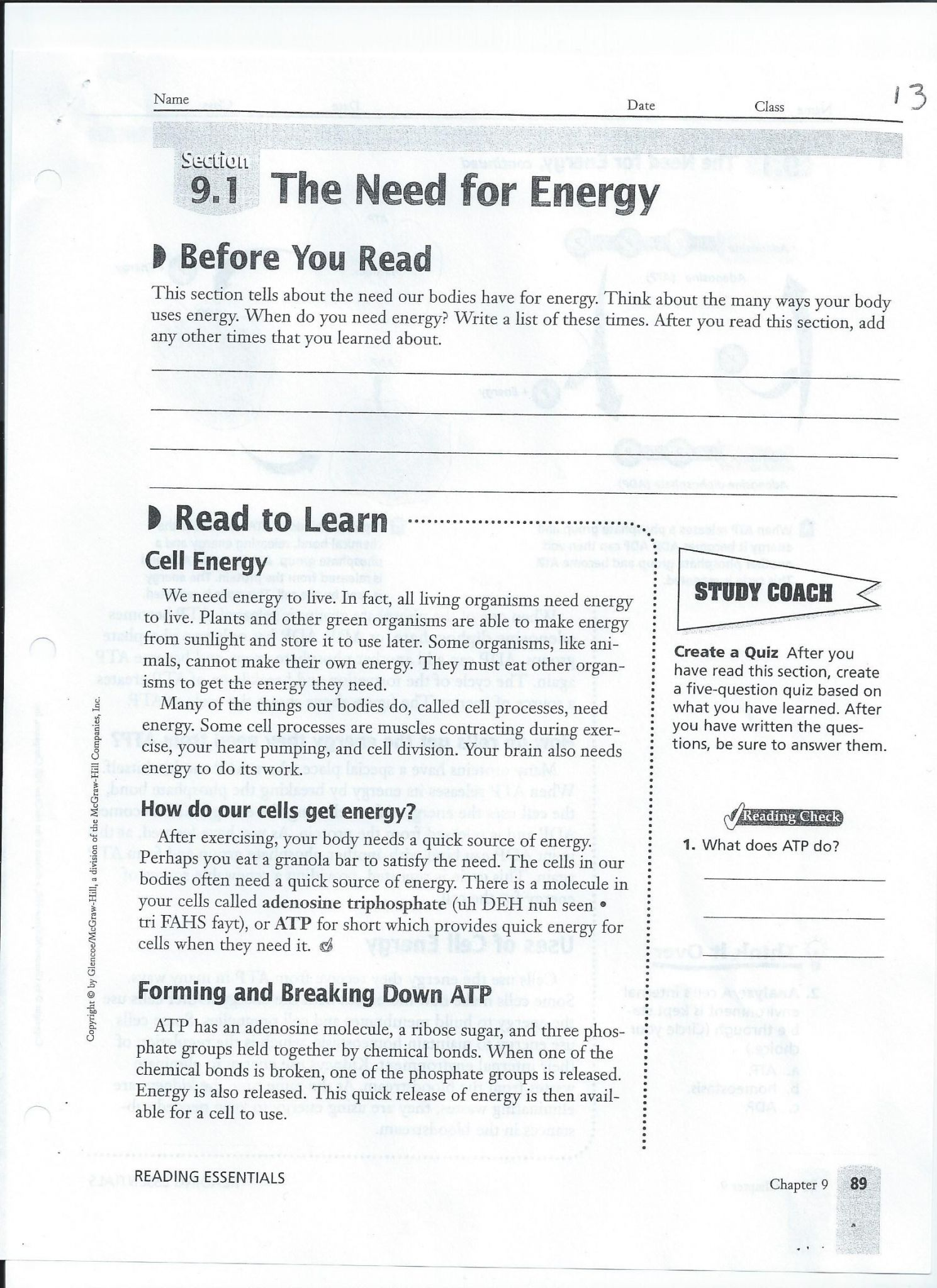 Chapter 7 Active Reading Worksheets Cellular Respiration
