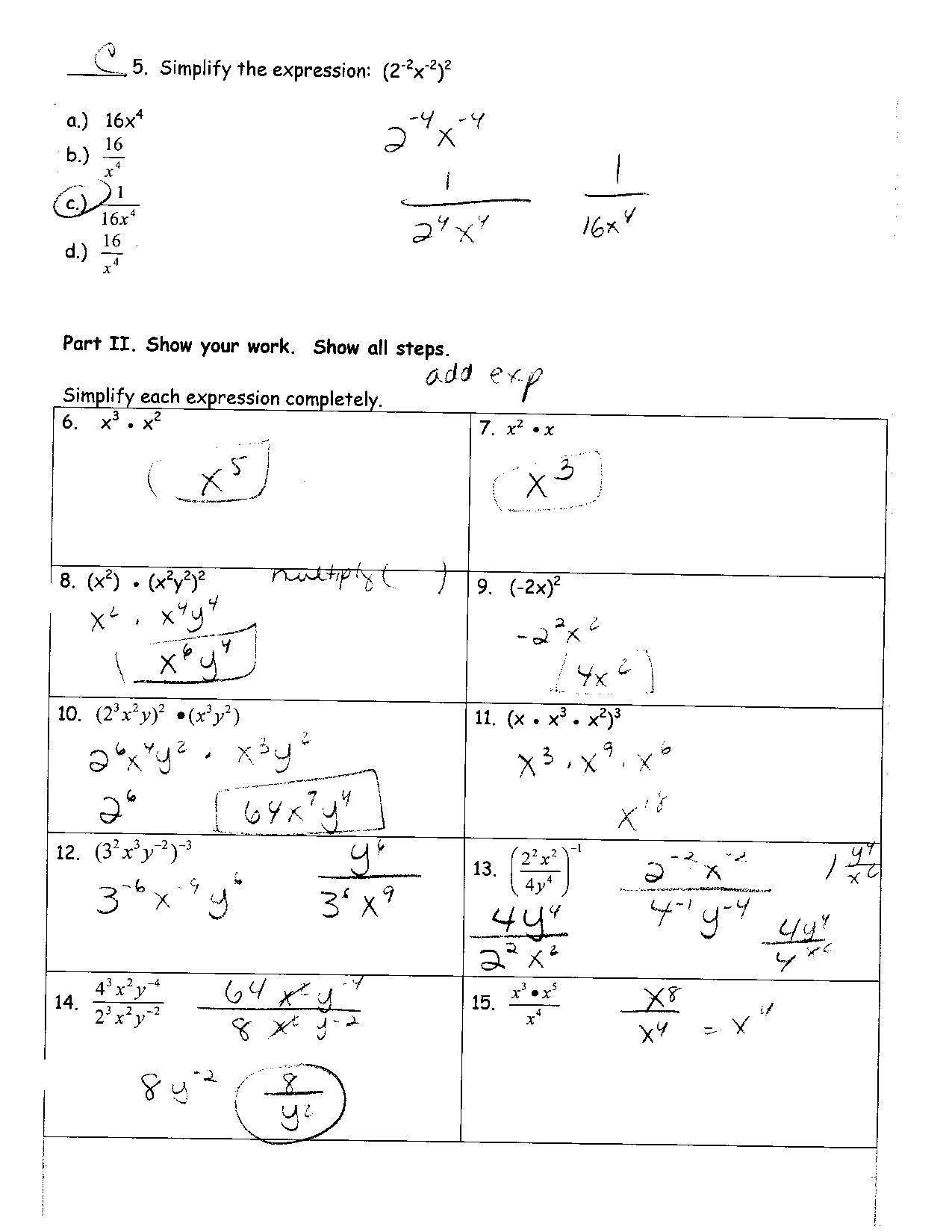 Chapter 7 Cell Structure And Function Worksheet Answer Key