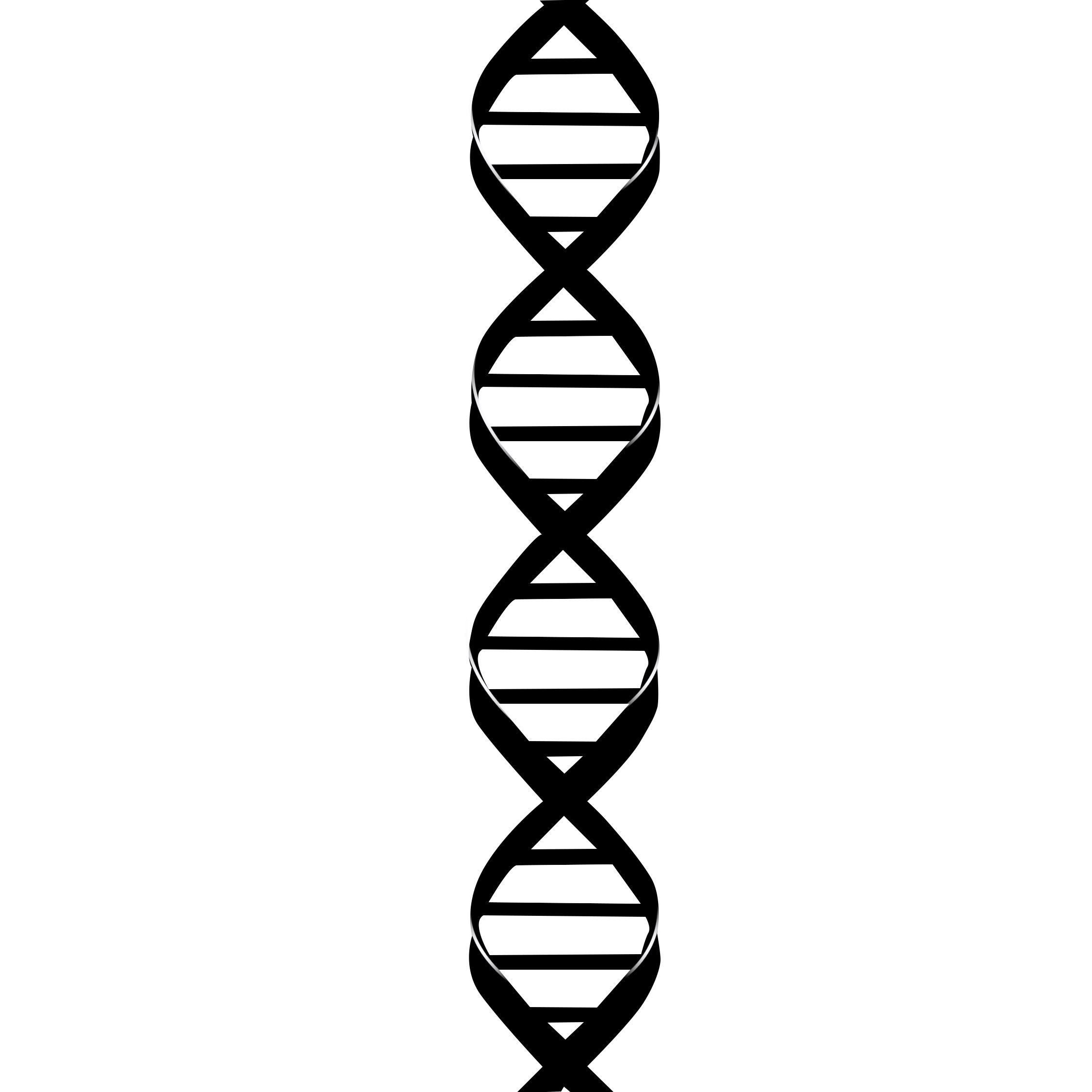 Dna The Double Helix Coloring Worksheet Answer Key