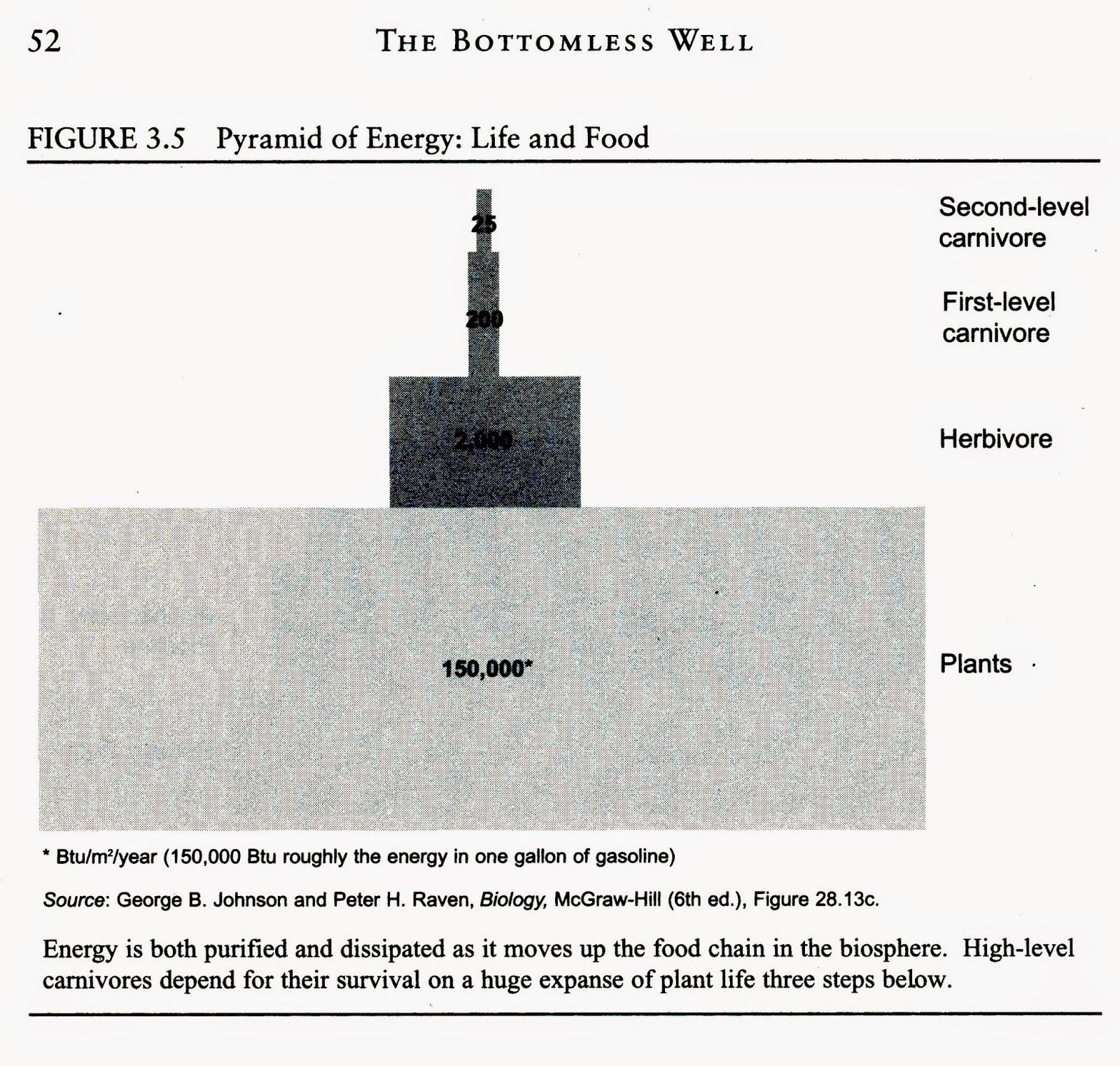 Energy Flow In Ecosystems Worksheet Answers