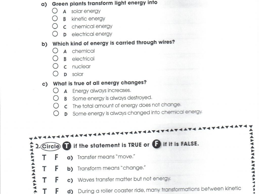 Energy Through Ecosystems Worksheet