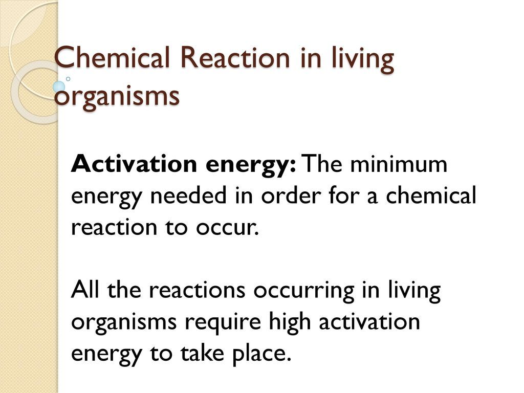 Energy Transfer In Living Organisms Worksheet