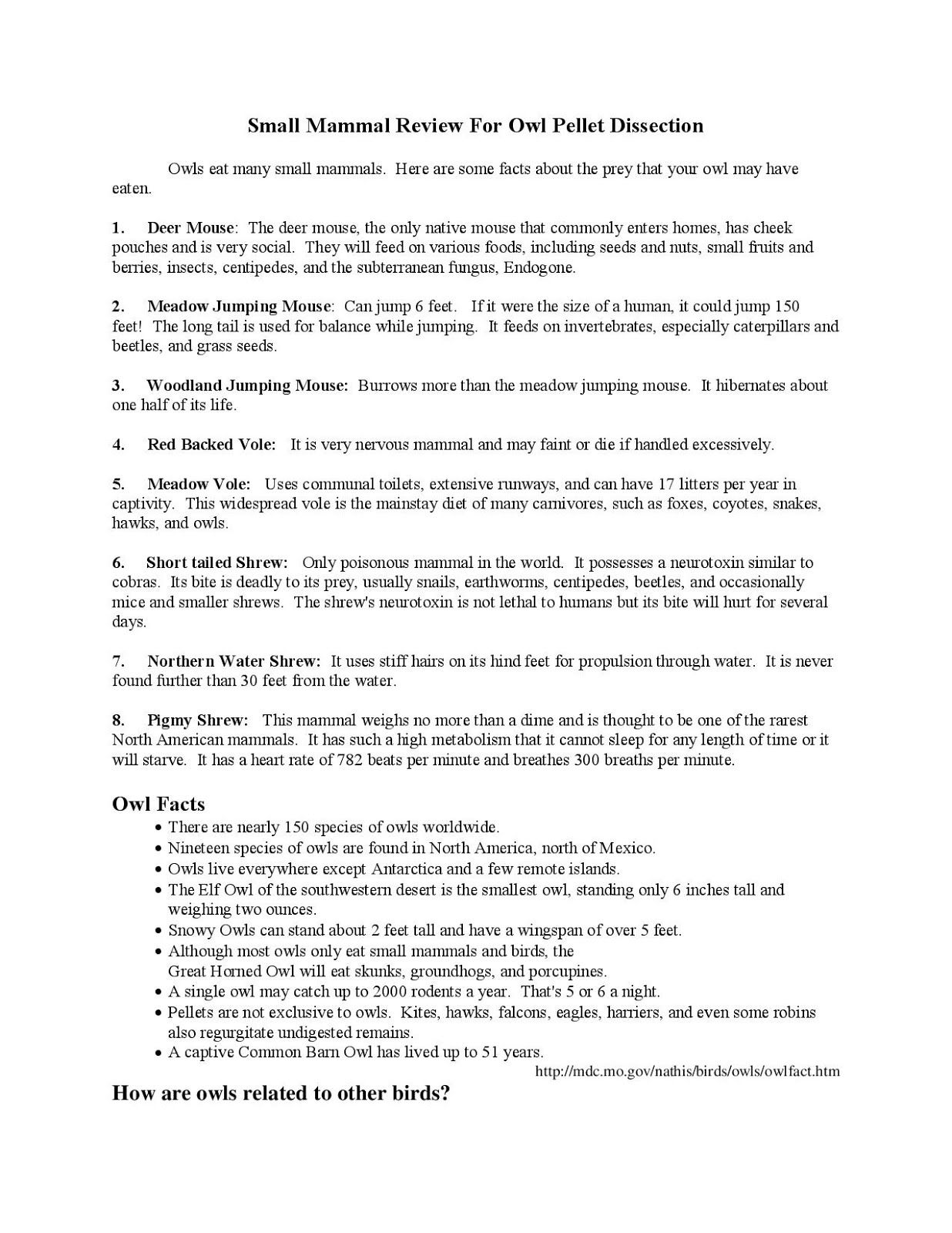 Galapagos Island Finches Worksheet