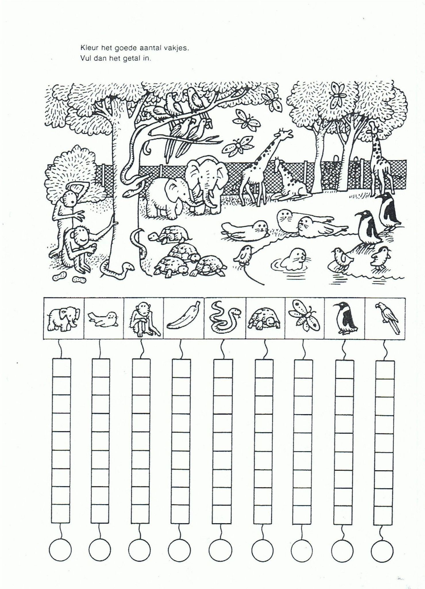 Kindergarten Science Worksheets