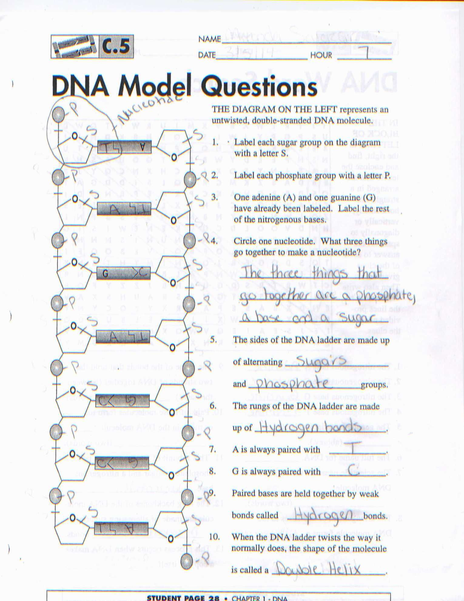 Lewis Dot Diagram Worksheet Answer Key