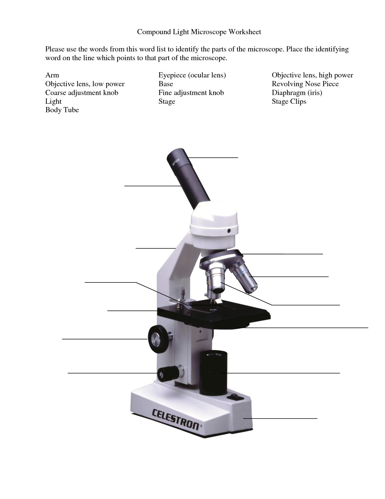 Microscope Parts And Use Worksheet Answer Key