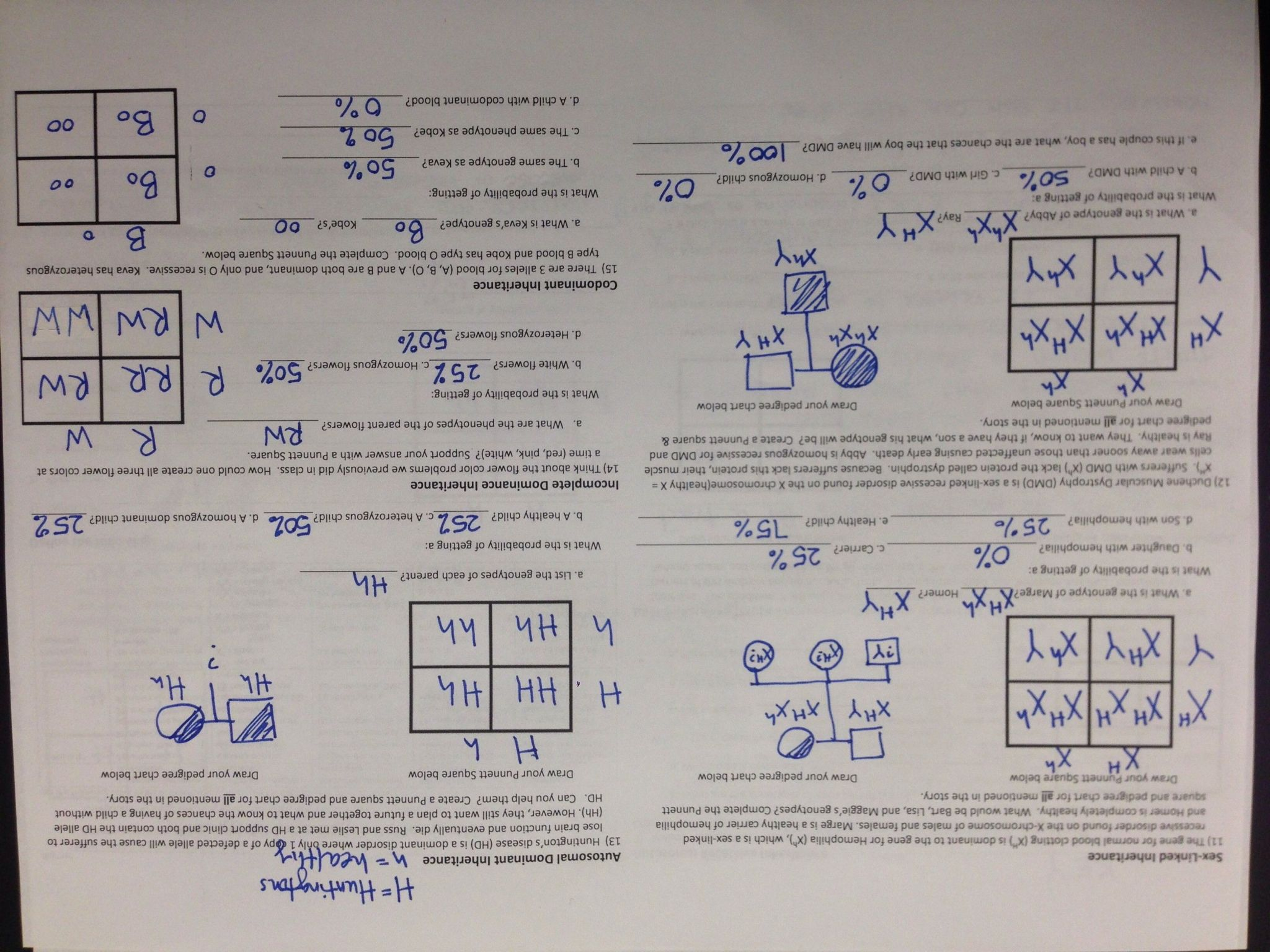 Motion Graphs Worksheet Answer Key