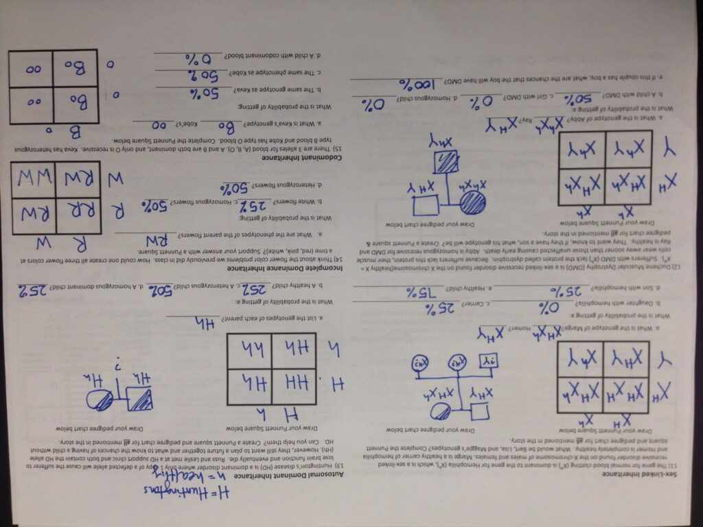 Multiple Alleles Blood Type Worksheet Answers