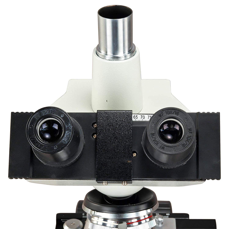 Optical Microscopes Worksheet